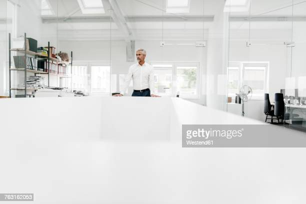mature businessman at conference table in office - europäischer abstammung stock-fotos und bilder