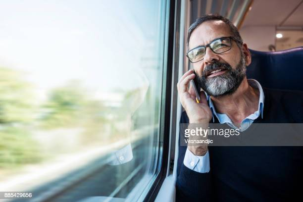 Mature businessman in train