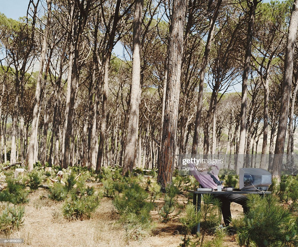 Mature Businessman Relaxes at a Desk in a Forest : Stock Photo