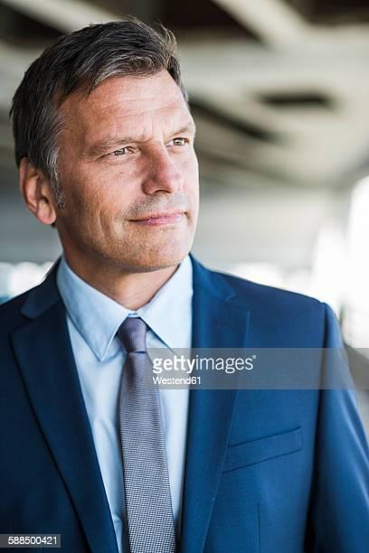 Mature businessman smiling confidently, portrait