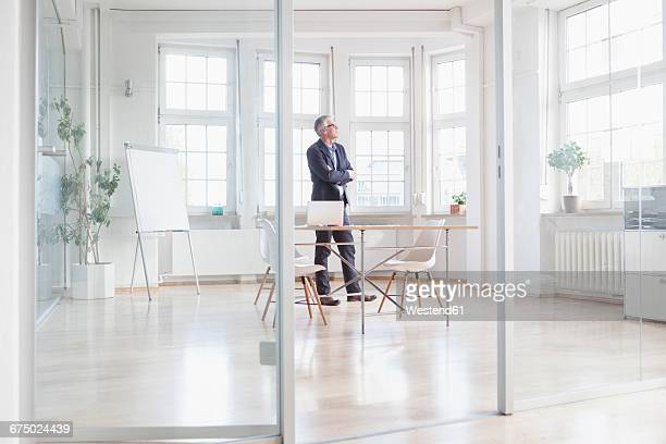 Mature businessman standing in bright office