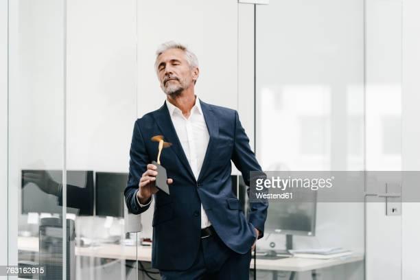 mature businessman using fan in office - wärme stock-fotos und bilder