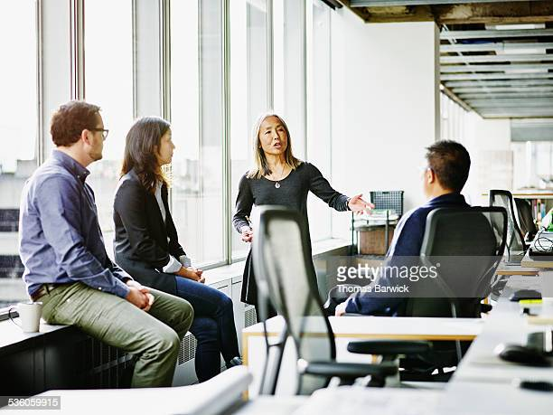 mature businesswoman leading team meeting - leanincollection stock pictures, royalty-free photos & images
