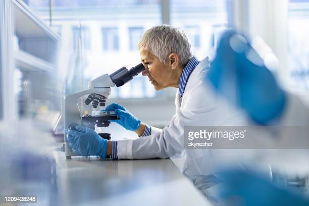 mature chemist working on a microscope in laboratory. - microscope stock pictures, royalty-free photos & images