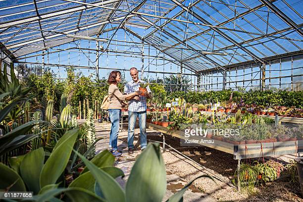 Mature couple choosing a cactus in a plant nursery
