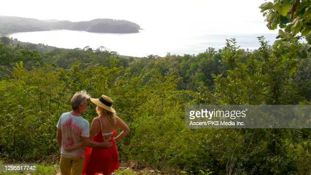 mature couple look out over jungle to ocean at sunrise - look back at early colour photography imagens e fotografias de stock