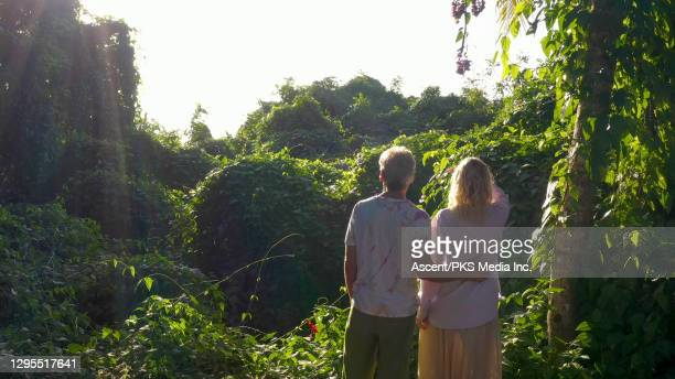 mature couple look over jungle canopy at sunrise - look back at early colour photography imagens e fotografias de stock