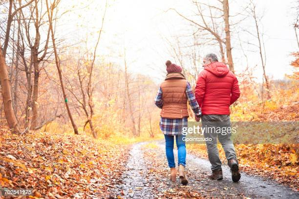 Mature couple walking along rural pathway, in autumn, rear view