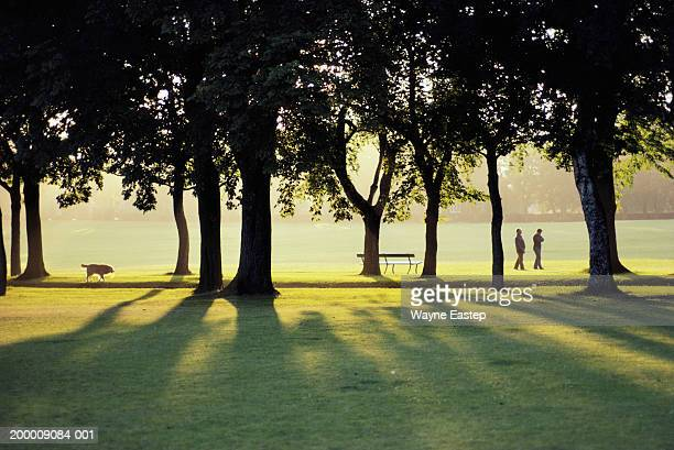 mature couple walking in park - public park stock pictures, royalty-free photos & images