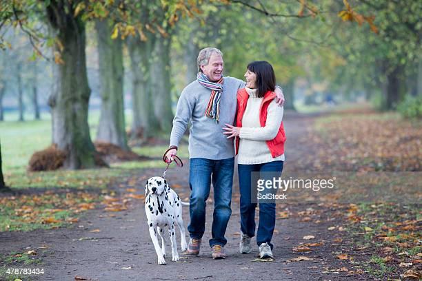 Älteres Paar Spaziergänge mit dem Hund