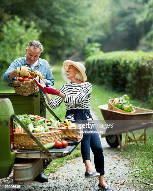 Mature Couple With Harvested Vegetables In Garden.
