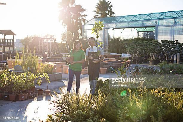 Mature couple working at garden center