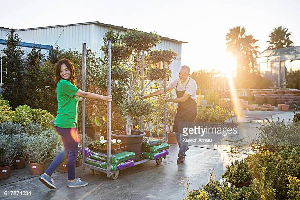 Mature couple working at plant nursery