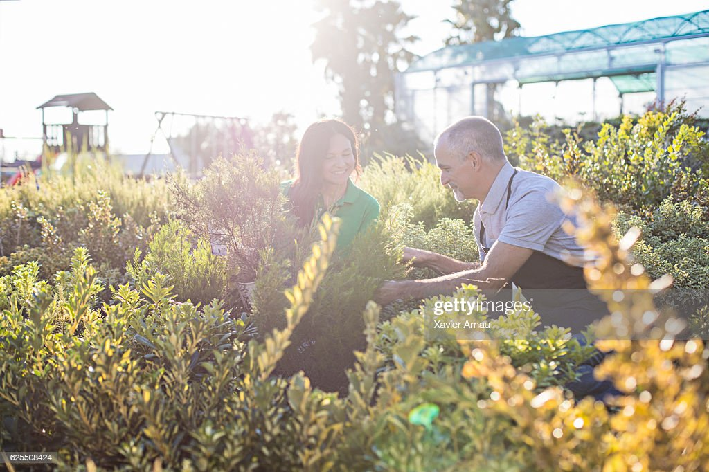 Mature couple working in a garden center : Stock Photo