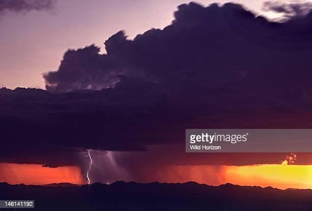 Mature cumulonimbus cloud at sunset with rain shaft and lightning Avra Valley Tucson Arizona USA