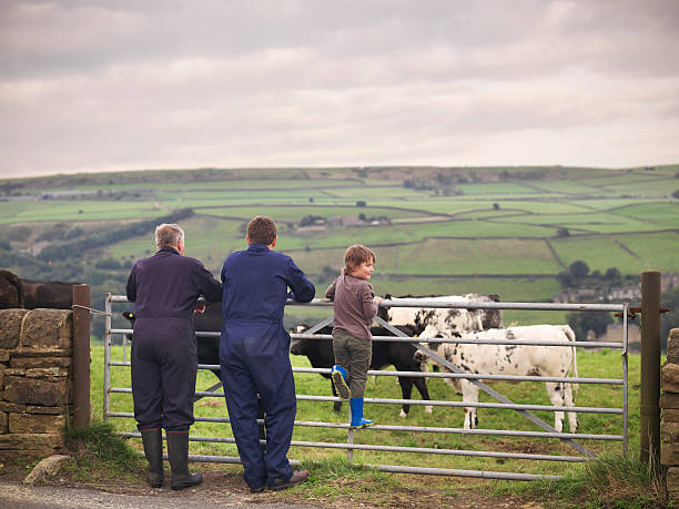 Mature Farmer, Adult Son And Grandson Leaning On Gate To Cow Field, Rear View Wall Art