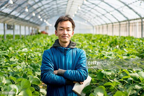 mature farmer with a tablet computer in a greenhouse - asian farmer stockfoto's en -beelden