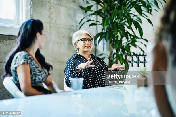 mature female business owner leading team discussion during project meeting in conference room - financiën en economie stockfoto's en -beelden