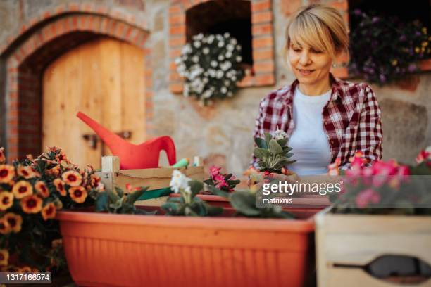 mature female gardening at spring time - matrixnis stock pictures, royalty-free photos & images