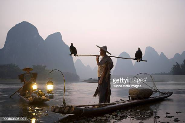 Mature fisherman with cormorans, dusk, side view