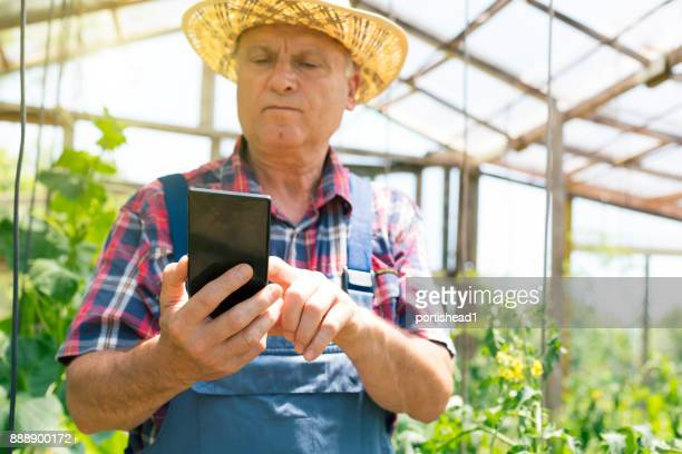 Mature gardener using modern technology