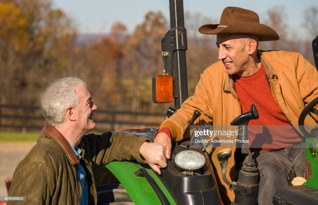 Mature Gay Cowboys Or Ranchers Affectionately Holding Hands While One Is On Tractor -5731