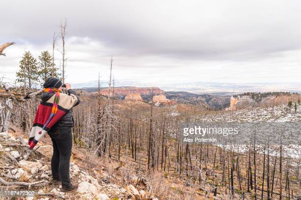 mature happy, body-positive, 45-years-old caucasian woman photographing the forest damaged by wildfire with a smartphone in bryce canyon national park, utah, usa, in the late fall. - 45 49 anni foto e immagini stock