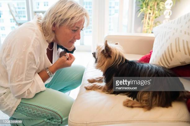"""reife lgbtq frauen spielen mit hund im wohnzimmer. - """"martine doucet"""" or martinedoucet stock-fotos und bilder"""
