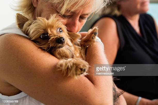 """mujeres lgbtq maduras con perro en el balcón sobre el océano. - """"martine doucet"""" or martinedoucet fotografías e imágenes de stock"""