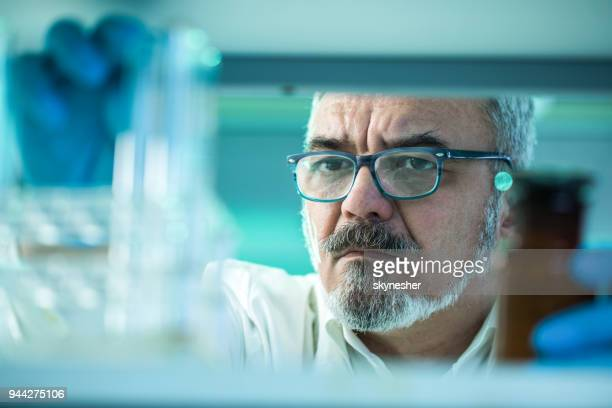 Mature male biochemist working with test tubes in laboratory.