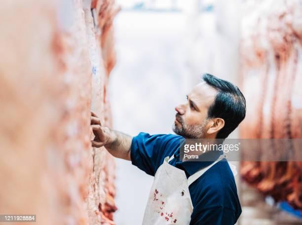 肉の品質をチェックする成熟した男性の肉屋 - 食肉処理場 ストックフォトと画像