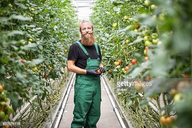 Mature male farm worker standing in greenhouse