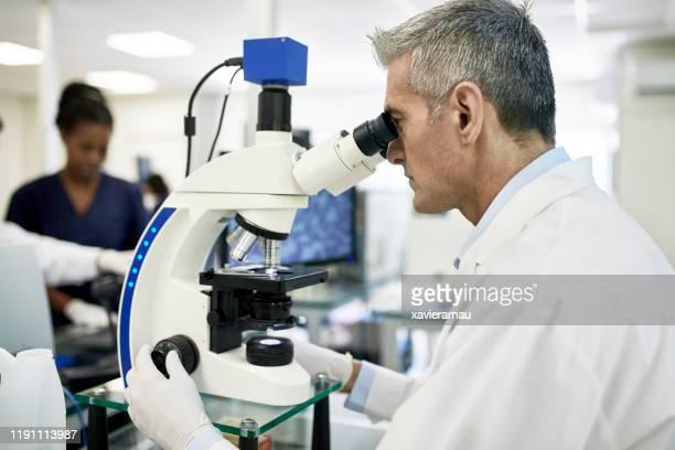 paciente sano maduro estudio muestra con microscopio - laboratorio clinico fotografías e imágenes de stock