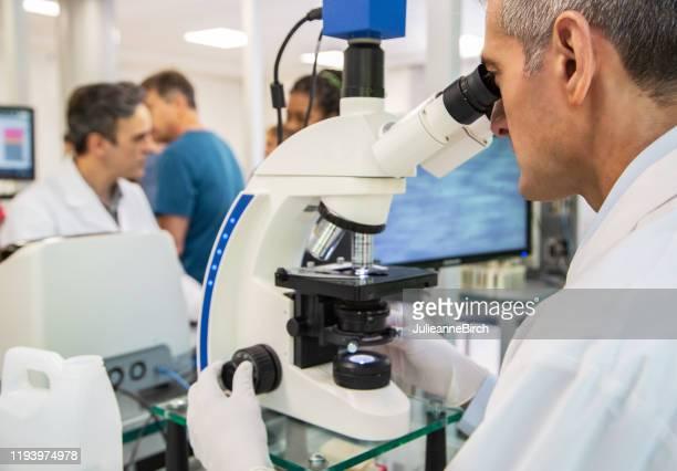 patólogo masculino madura usando microscopio en laboratorio - laboratorio clinico fotografías e imágenes de stock