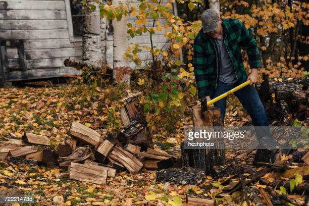 mature man chopping logs in autumn forest, upstate new york, usa - heshphoto photos et images de collection