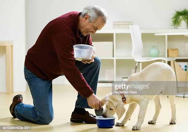 Mature man feeding dog at home