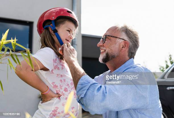 mature man fixing safety helmet on little girl's head - cycling helmet stock pictures, royalty-free photos & images