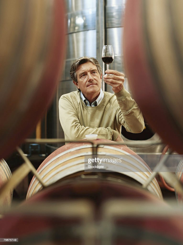 Mature man holding up glass of wine in wine cellar : Stock Photo