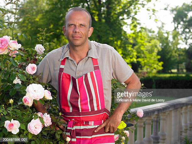 mature man in striped apron gardening, smiling, portrait - saint ferme stock photos and pictures
