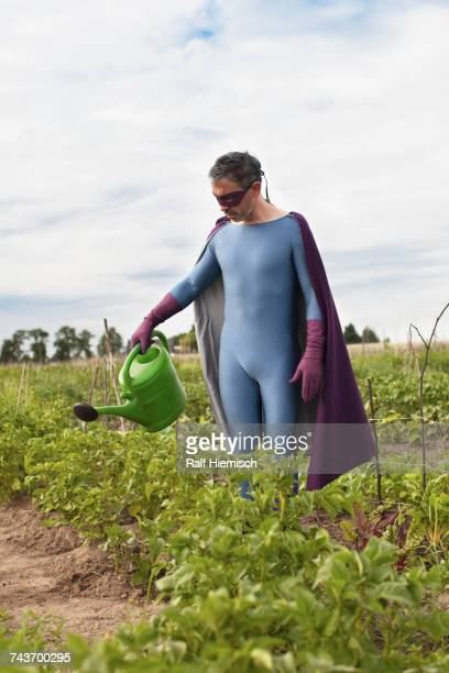 Mature man in superhero costume watering plants while standing at vegetable garden