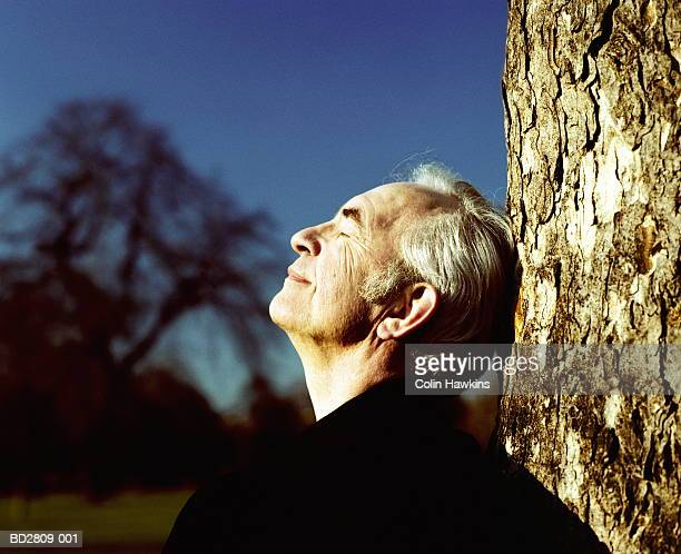 Mature man leaning against tree, eyes closed (Digital Enhancement)
