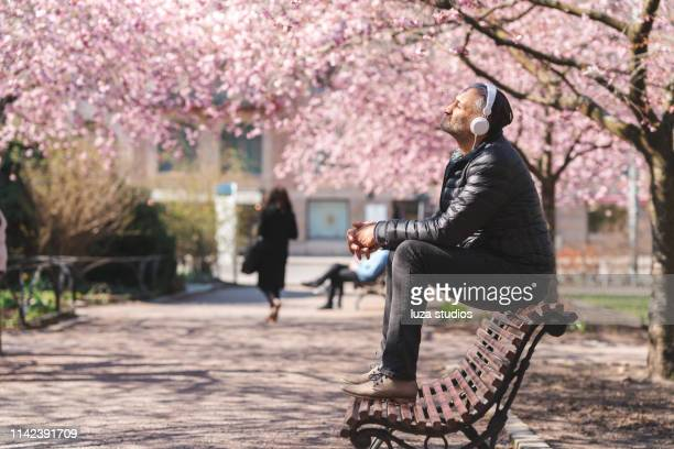 mature man listening to music in the park - springtime stock pictures, royalty-free photos & images