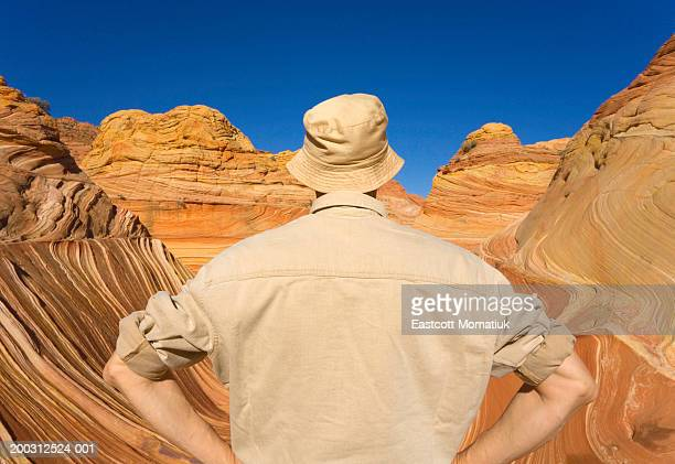 mature man looking at sandstone buttes, rear view - チューリップ帽 ストックフォトと画像