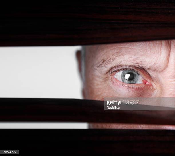 mature man looking through venetian blinds, frowning - gray eyes stock pictures, royalty-free photos & images