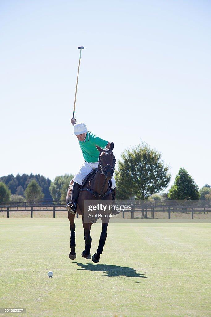 Mature man playing polo : Stock Photo