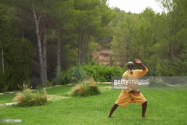 Mature man practises martial arts.