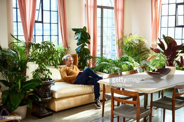 mature man resting on sofa with book - houseplant stock pictures, royalty-free photos & images