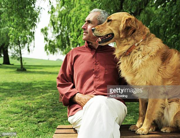Mature man sitting on park bench with golden retriever