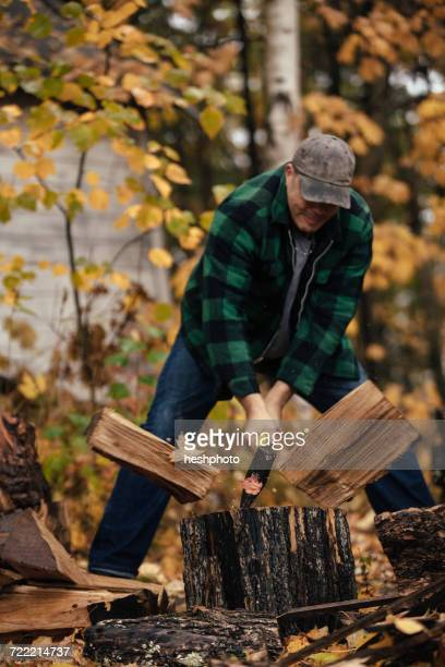 mature man splitting logs in autumn forest, upstate new york, usa - heshphoto photos et images de collection