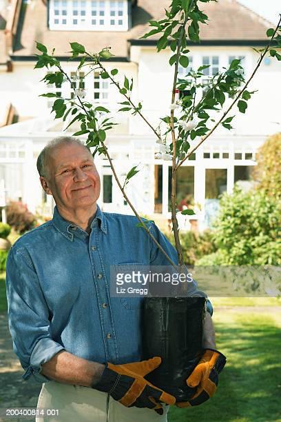 Mature man standing in garden holding sapling, smiling, portrait